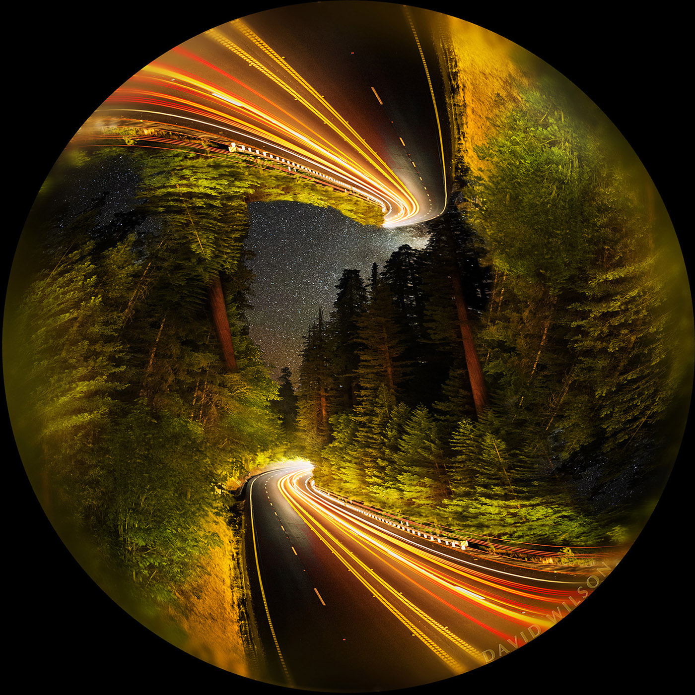 A para-symmetrical exercise created from a nighttime image along US 101, the Redwood Highway.