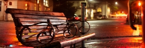 Scrunched down to a panorama shape, the empty bench at night