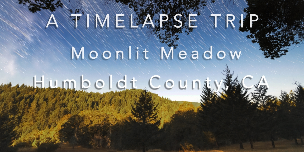 Moonlite Meadow timelapse video title screen